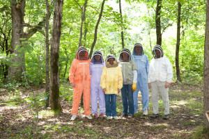 The Honey Harvest Gang
